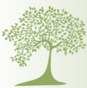 CFC Tree logo